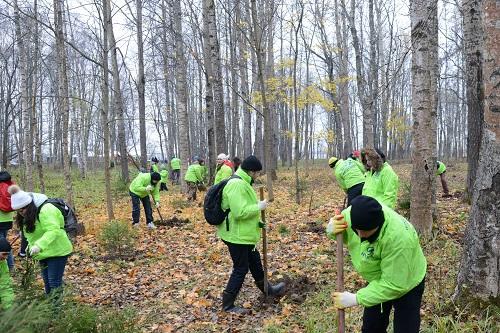 Российский завод Hyundai провел осеннюю экологическую акцию Eco Day