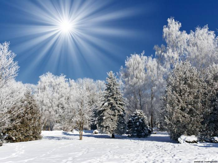 """Международный творческий клуб / Вечер """"Волшебная зима"""""""